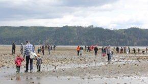 Shellfish farmers fighting global warming