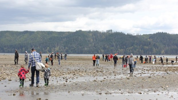 Shellfish farmers fighting global warming